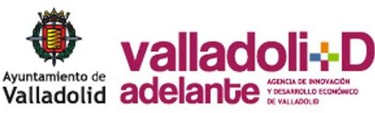 TIMMIS - Ayuntamiento de Valladolid