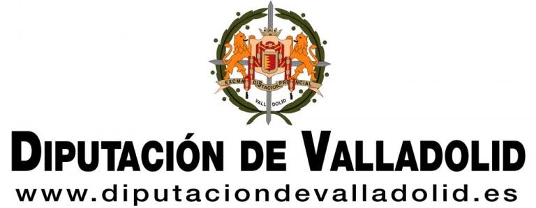 TIMMIS-Diputación de Valladolid. Área de Igualdad de Oportunidades y Servicios Sociales