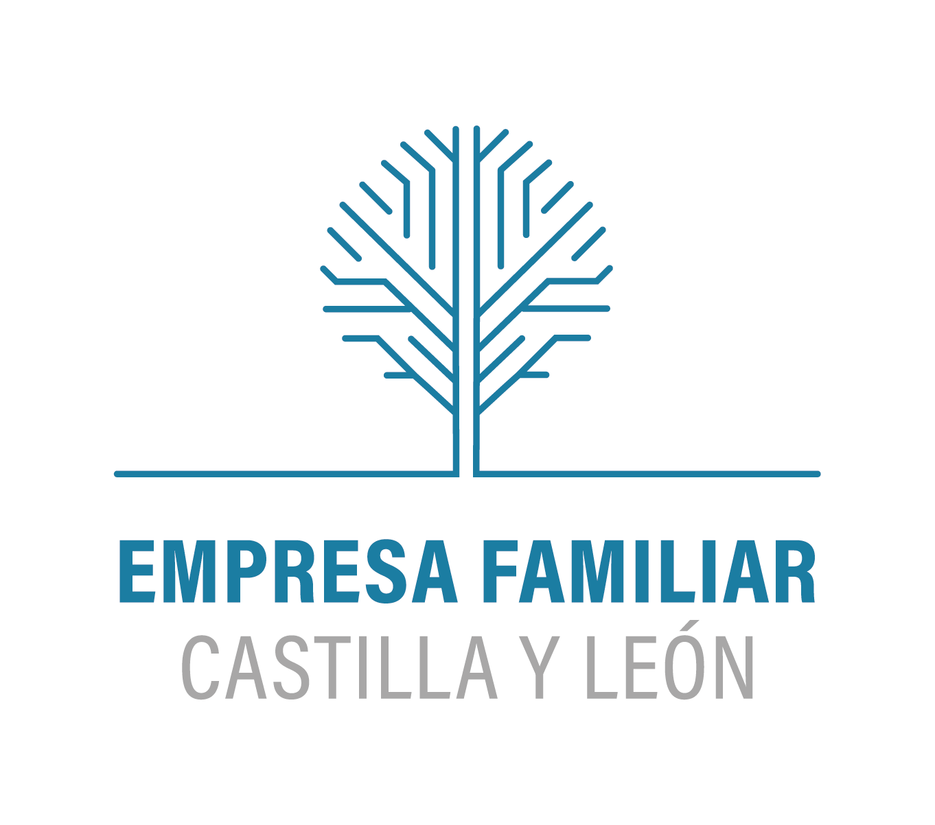 TIMMIS-empresa-familiar-CYL